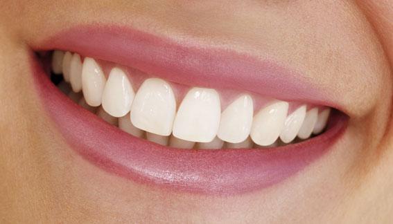 Ученые: препараты против болезни Альцгеймера могут посодействовать отрастить зубы