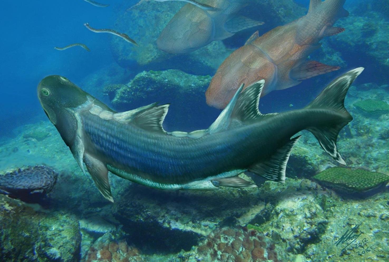 Древнейшие рыбы счешуей вформе ромба найдены в КНР