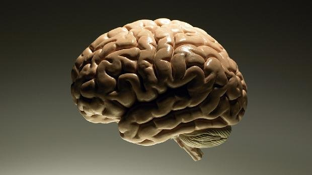 Ученые отыскали способ удаления страшных воспоминаний