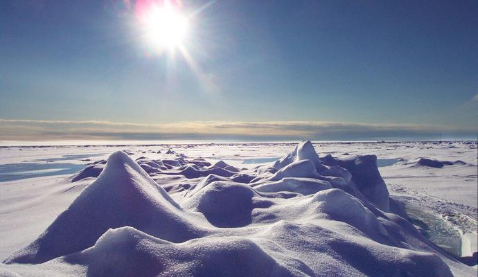 Ученые узнали, как глобальное потепление меняет жизнь жителей Арктики