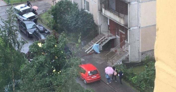 ВПетербурге беременная девушка упала свысоты наперила подъезда