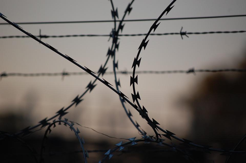 ВАрхангельской области осудили опасного садиста