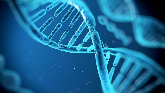 Датские ученые определили 6 признаков дефицита белка ворганизме