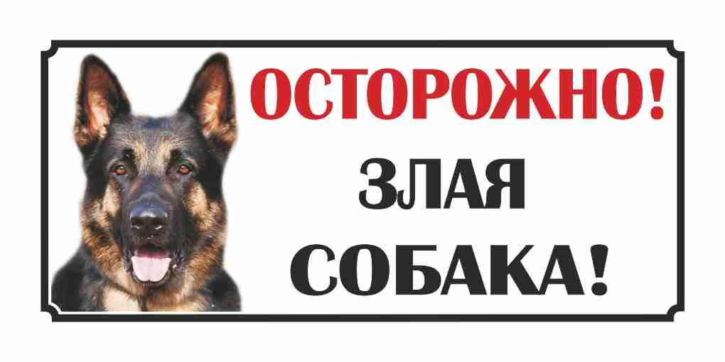 Воронежцам разрешат выгуливать собак без поводка инамордника