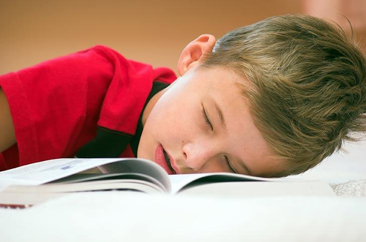 Ученые: Короткий сон способствует лучшему запоминанию информации