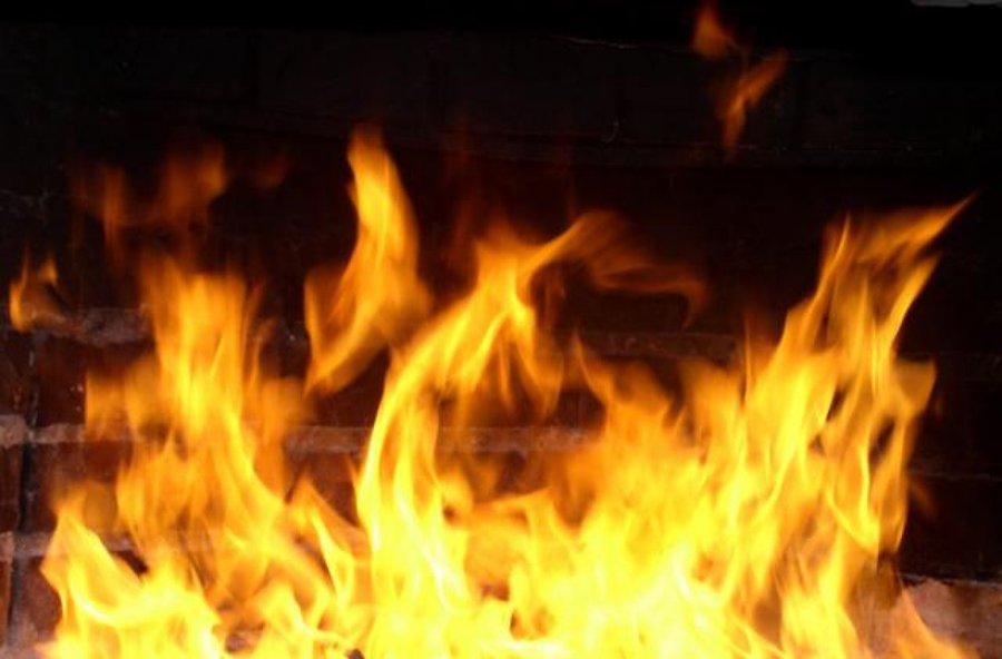 Напожаре вКрасногородском районе погибли двое малолетних детей