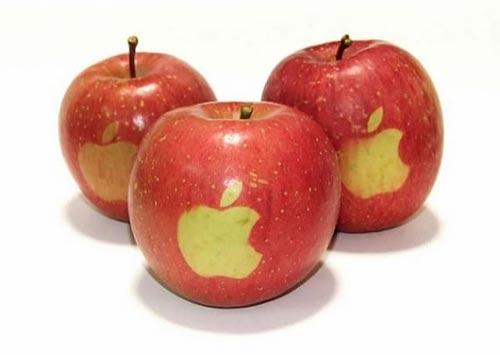 Apple может запустить производство собственных устройств вИндии