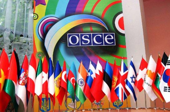 Русские хакеры совершили кибератаку наОБСЕ