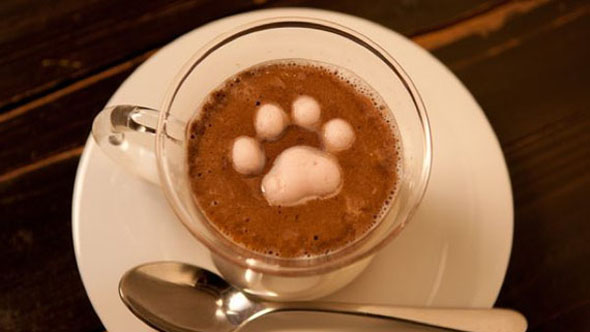 Кофе не увеличивает артериальное давление— Исследование