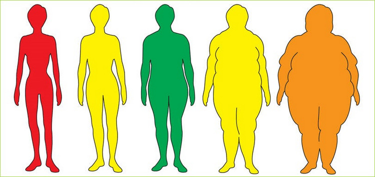 the concept behind the use of bmi to measure fatness This free body fat calculator estimates body fat percentage based on the us navy method as well as the bmi method it displays a number of results including the fat.